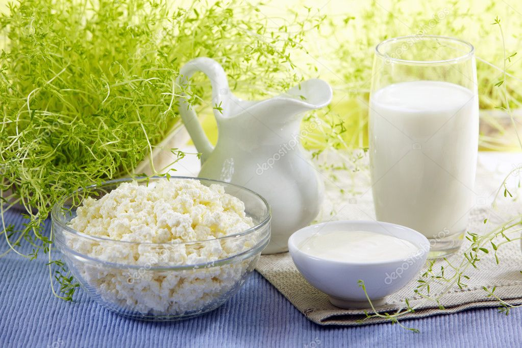 Fresh milk products — Stock Photo #2415425