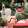 Foto de Stock  : Army loyalty oath handshake