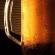 The cold beer — Stock Photo #1562299