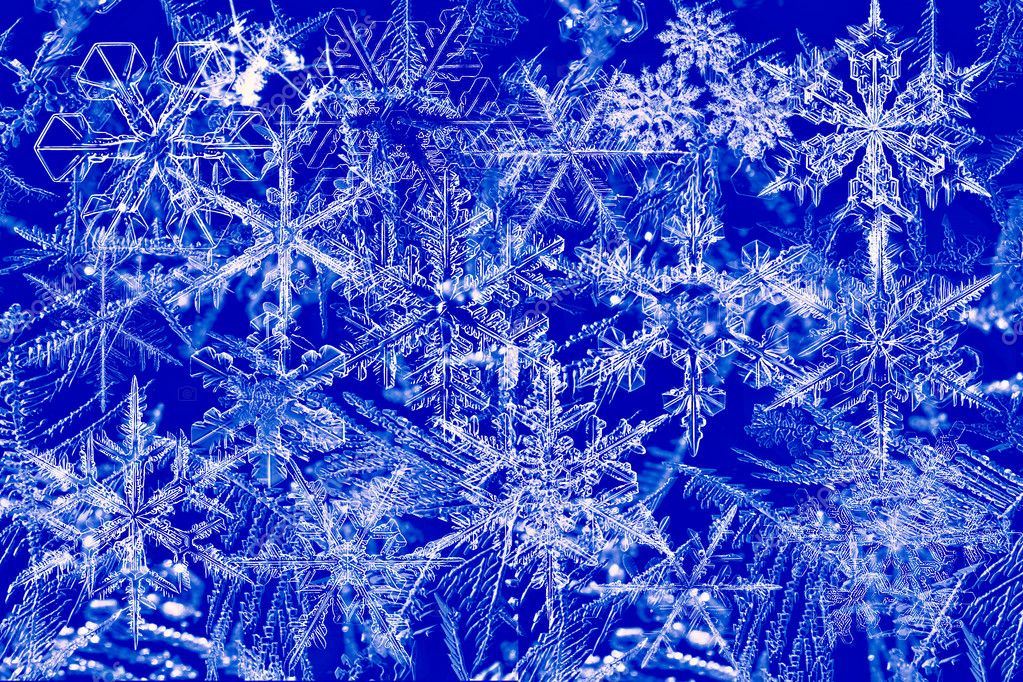 Pattern on freeze glass — Stock Photo #1446297
