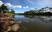 Jardín botánico tropical — Foto de Stock