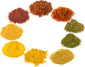 Spice - on a white background. — Stock Photo