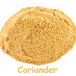 Spice - coriander on a white background. - Stock Photo