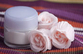 Cream and roses — Foto Stock