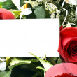Roses card — Stock Photo
