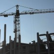 Silhouettes of elevating cranes — Stock Photo