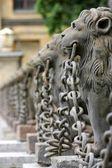 Lions — Stockfoto