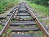 The old tracks — Stock Photo