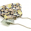 Royalty-Free Stock Photo: Purse with Money