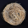 Stock Photo: Empty Nest