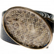 Stock Photo: Animal Skin Belt