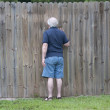 Peeking Through a Hole in the Fence — Stock Photo