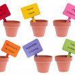 Group of Clay Pots with Colored Signs - Stock Photo