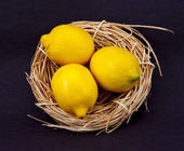 Nest Egg Turned into Lemons — Stock Photo