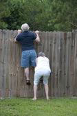 Wścibski sąsiad — Zdjęcie stockowe