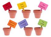 Skupina hliněné hrnce s barevnými znaky — Stock fotografie