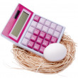 Stock Photo: Calculate Cost of Your Nest Egg