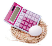 Calculate the Cost of Your Nest Egg — Stock Photo