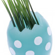 Easter Egg with Grass — Stock Photo