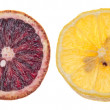 Slices of Lemon and Blood Orange — Stock Photo