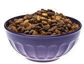 Bowl of Pet Food — Stock Photo