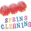Spring Cleaning — Stock Photo #2610548