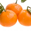 Royalty-Free Stock Photo: Three tangerines