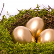 Gold eggs in a nest - Stock Photo