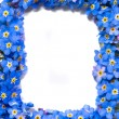 Stock Photo: Forget-me-not flowers frame