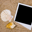 Photo frame with sea shells on sand — Stock Photo #1511133