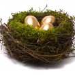 Golden eggs in nest — Stock Photo #1540523