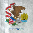 Grunge Flag of Illinois — Stok fotoğraf