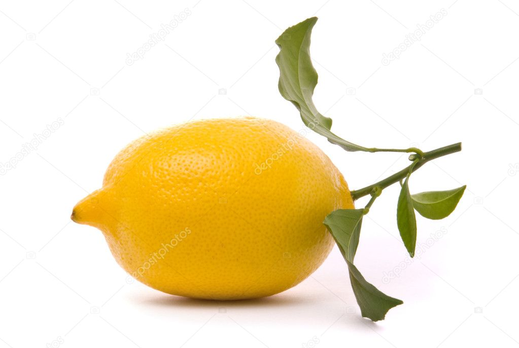 Fresh lemon isolated on a studio white background. — Stock Photo #1540939