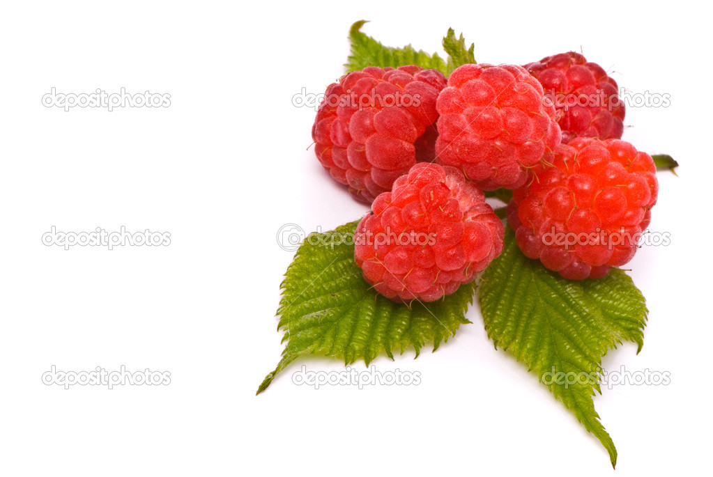 Forest raspberries. Macro shot. Studio white background — Stock Photo #1542086