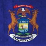 Grunge Flag of Michigan — Stock Photo