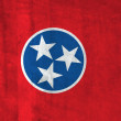 Grunge Flag of Tennessee — Stock Photo
