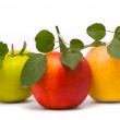 Red, yellow and green fresh apples — Stock Photo