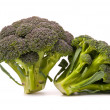 Fresh broccoli isolated over the white — Stock Photo