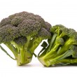 Fresh broccoli isolated over the white — Stock Photo #1656869