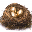 Gold eggs in nest — Stock Photo #1689272