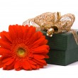 Red gerber flower and gift box — Stock Photo #1745386