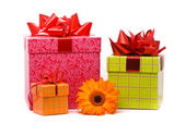 Orange gerber flower and gift boxes — Stock Photo