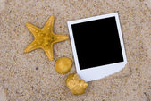 Photo frame with golden sea shells — Stock Photo