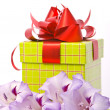 Stock Photo: Beautiful gladiolus and gift box.