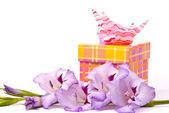 Beautiful gladiolus and gift box. — Stock Photo
