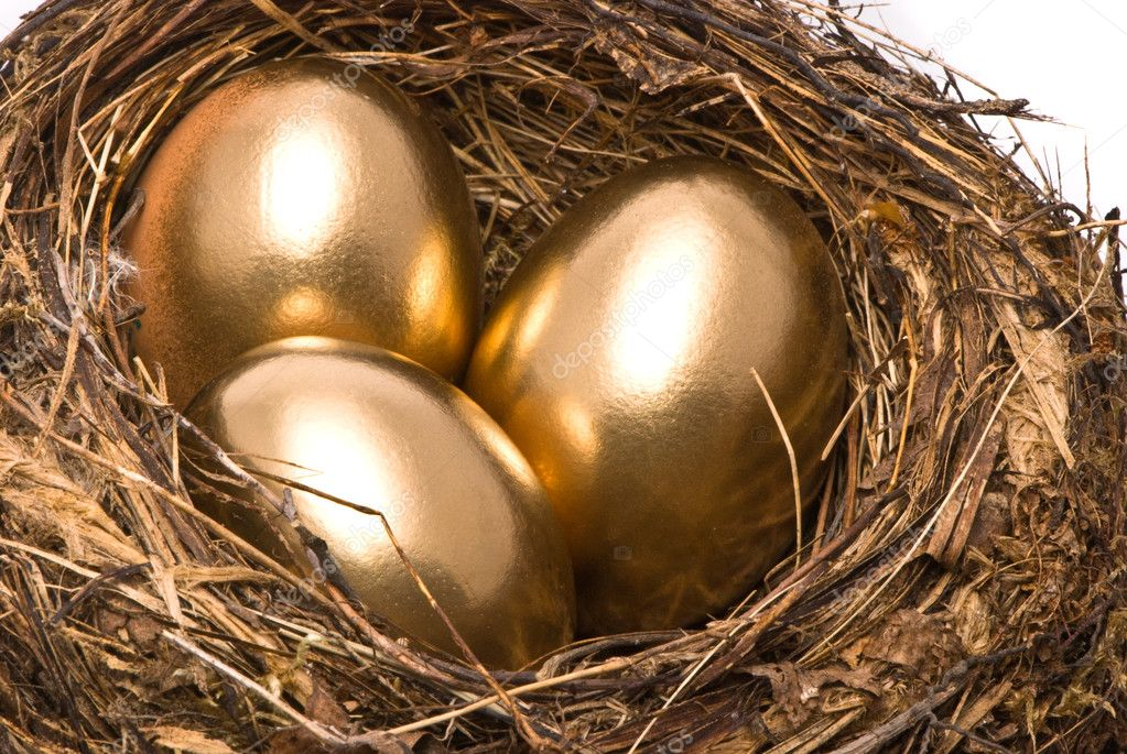 Gold eggs in a nest — Stock Photo © HintauAliaksey #1862249
