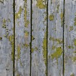Grunge wood background — ストック写真