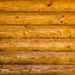 Quality wooden background — Stock Photo #1900520