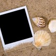 Photo frame with seshells — Stock Photo #1900685