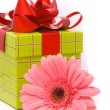 Stock Photo: Pink gerber flower and gift box